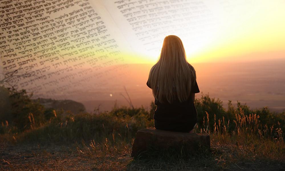 Parashá, Judaísmo, Metzora